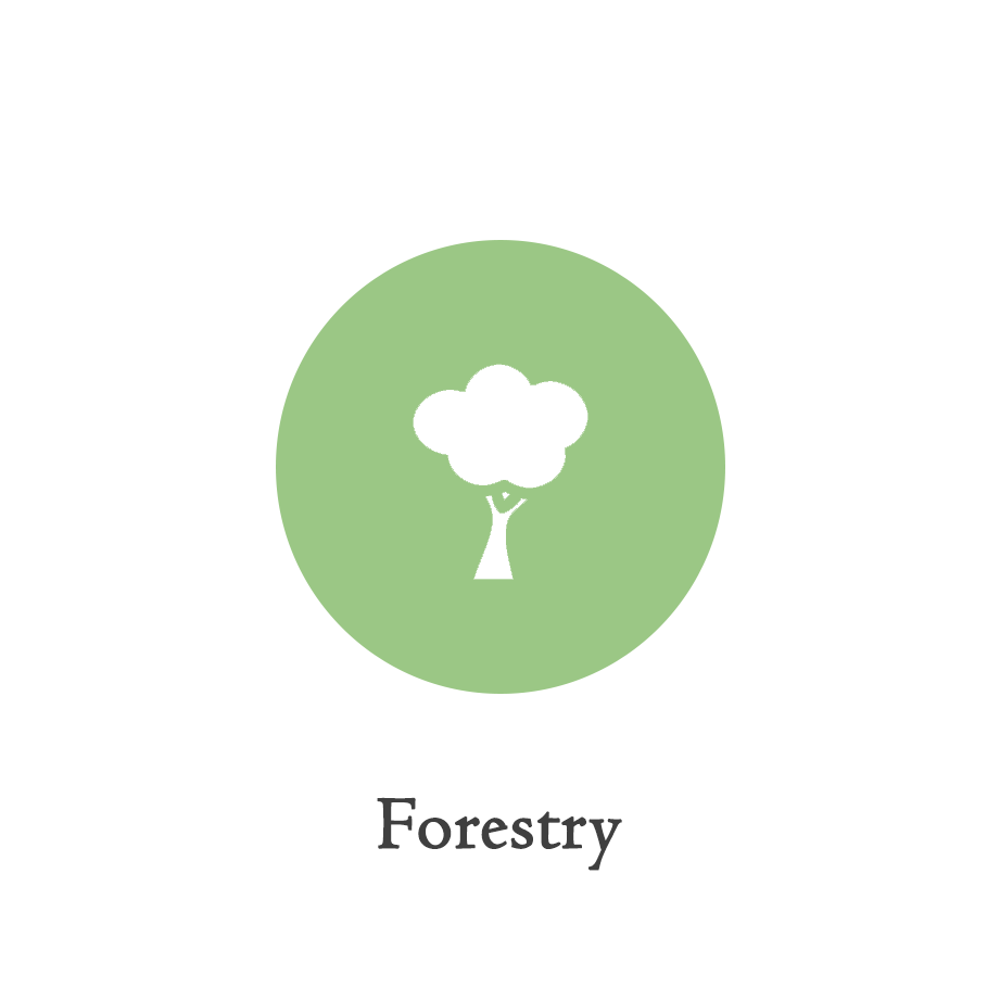 ICON_forestry.png