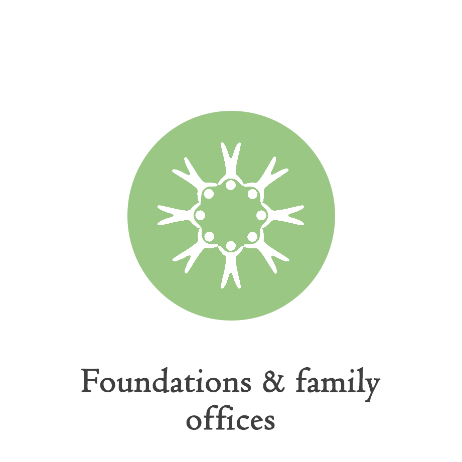 foundations_icon.png