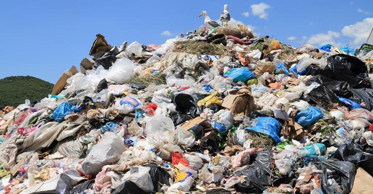 landfill-2.jpg