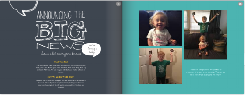 online pregnancy journal