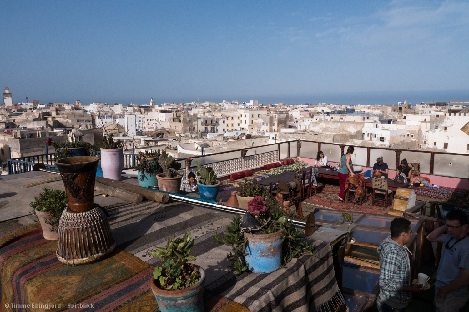 view from the Atlantic Hostel in Essaouira