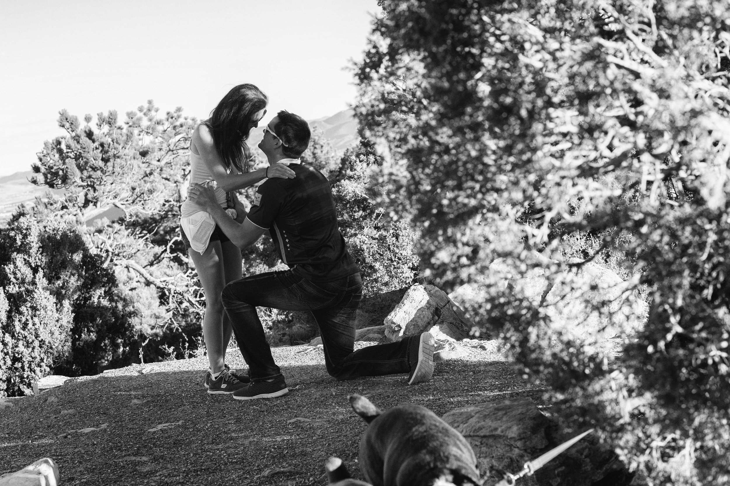 proposal-photographer009.jpg