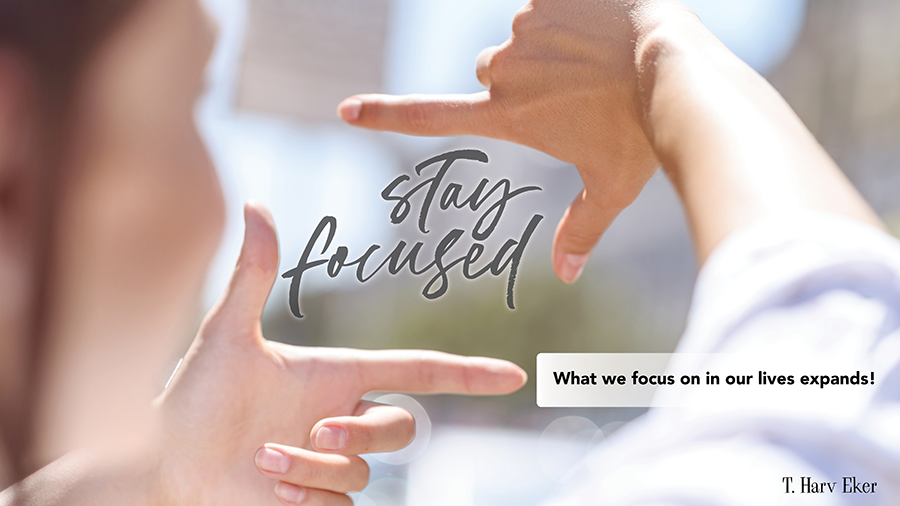 what-we-focus-on-...png