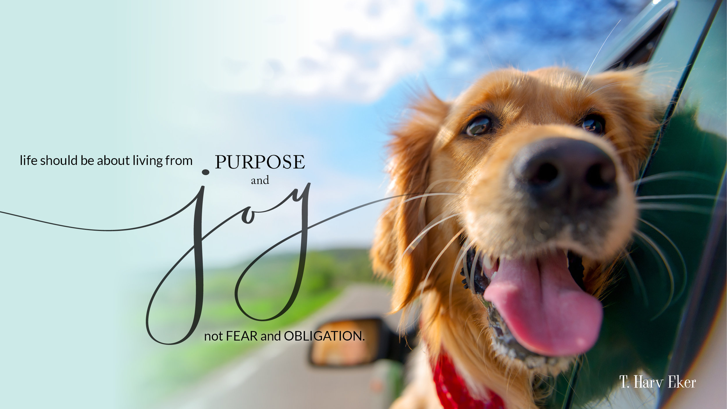 joy and purpose small.jpg