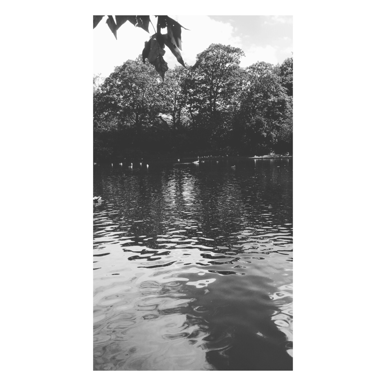 Photo 04-09-2017, 22 23 32.jpg
