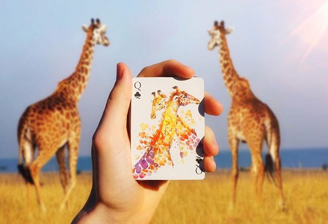 ✈️ We actually flew all the way to Africa to take this picture 🌍🤥 ➡️for any wondering, this is the queen of clubs from the masterpiece deck by @thebocopoplayingcardco 🦒