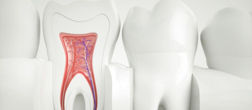 teeth-banner.jpg