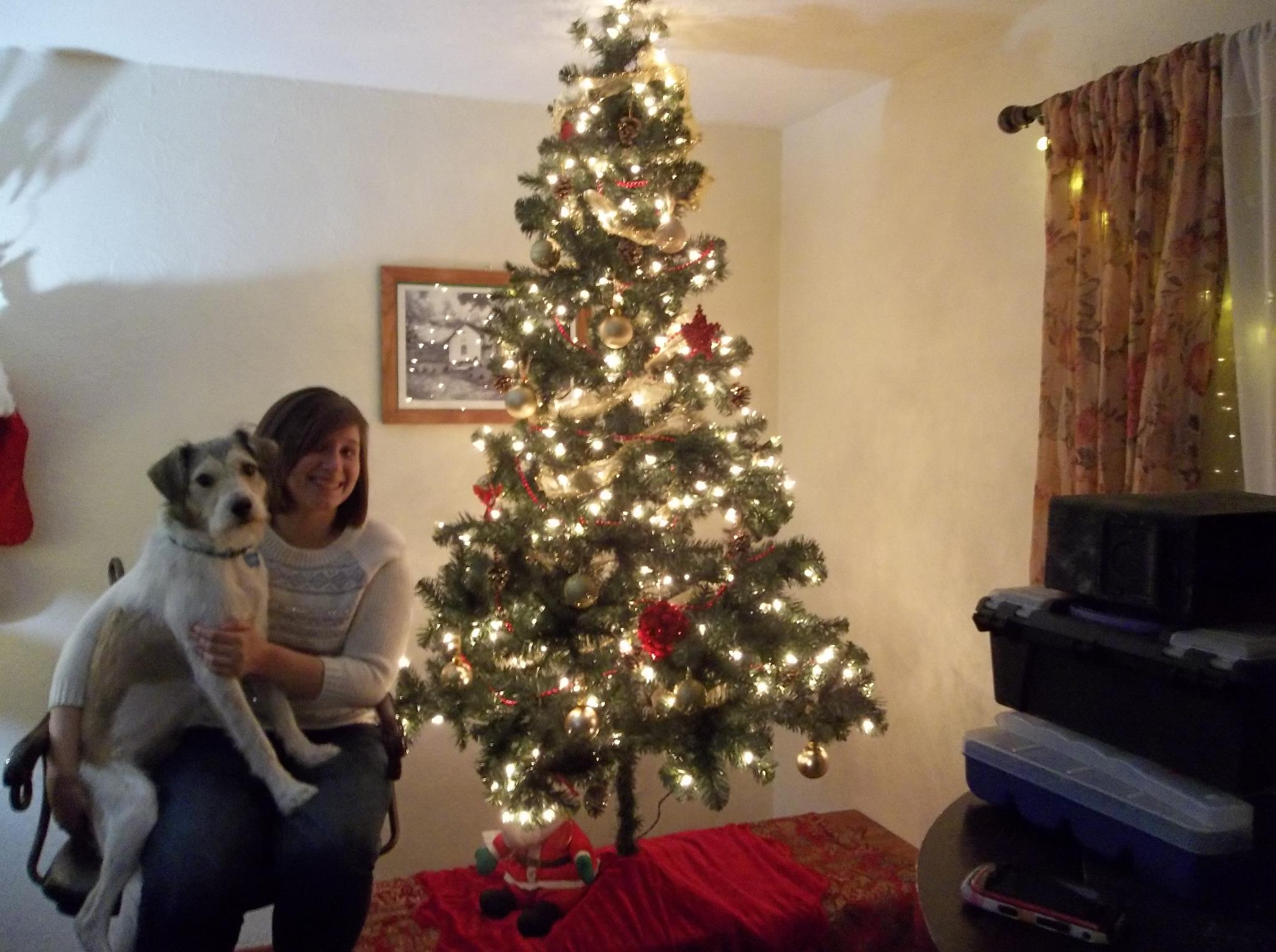 Gatsby and I try to pose for a Christmas card.