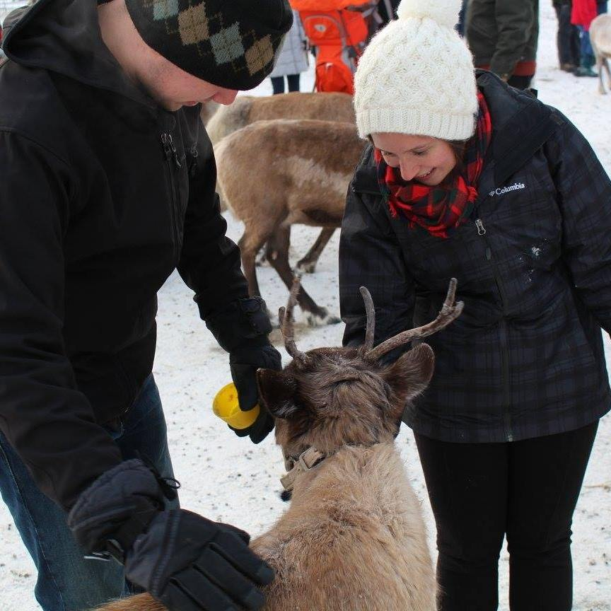 My first Christmas in Alaska, spent petting reindeer. I've peeked in life.