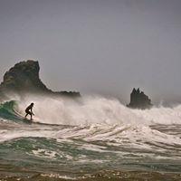 Alex surfing.jpg