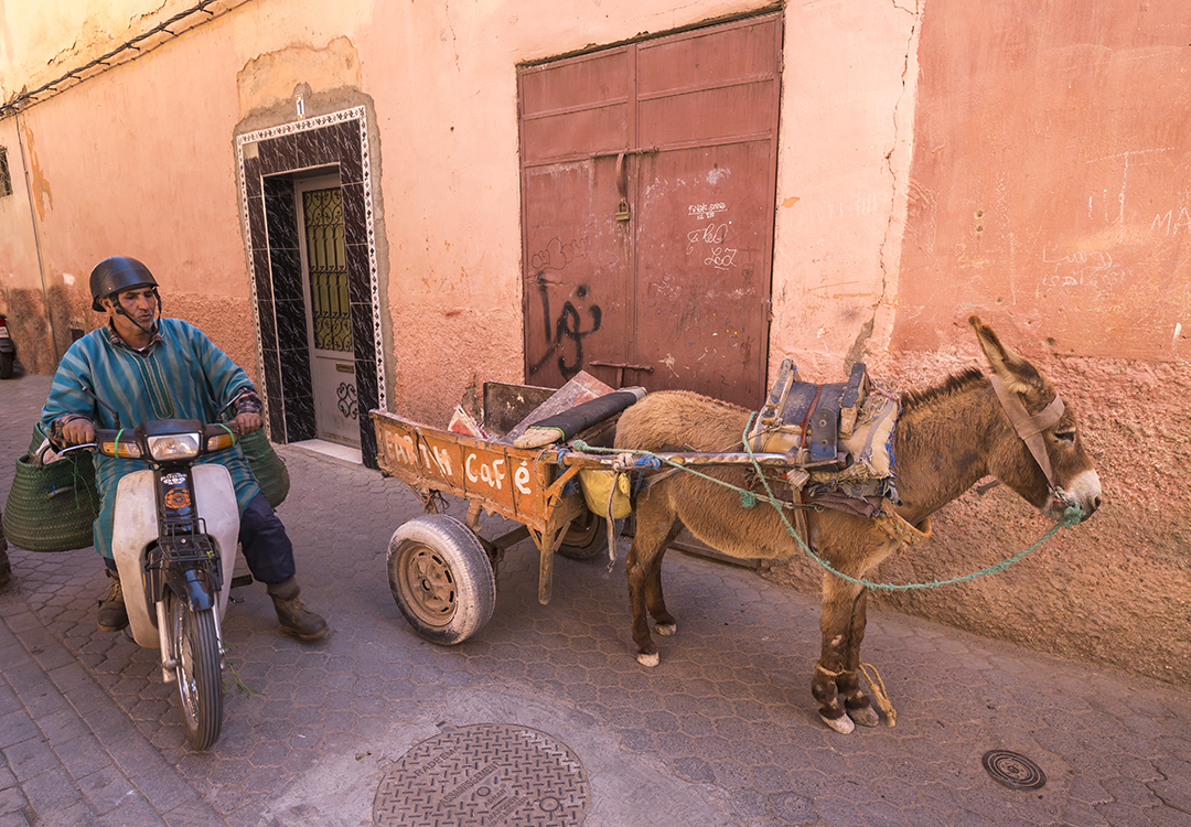 While walking through the city center, it is very easy to get stuck into the traffic of the Medina's alleys. But it's not the traffic we're used to... Here you have to dodge mopeds, donkey carts and street vendors.