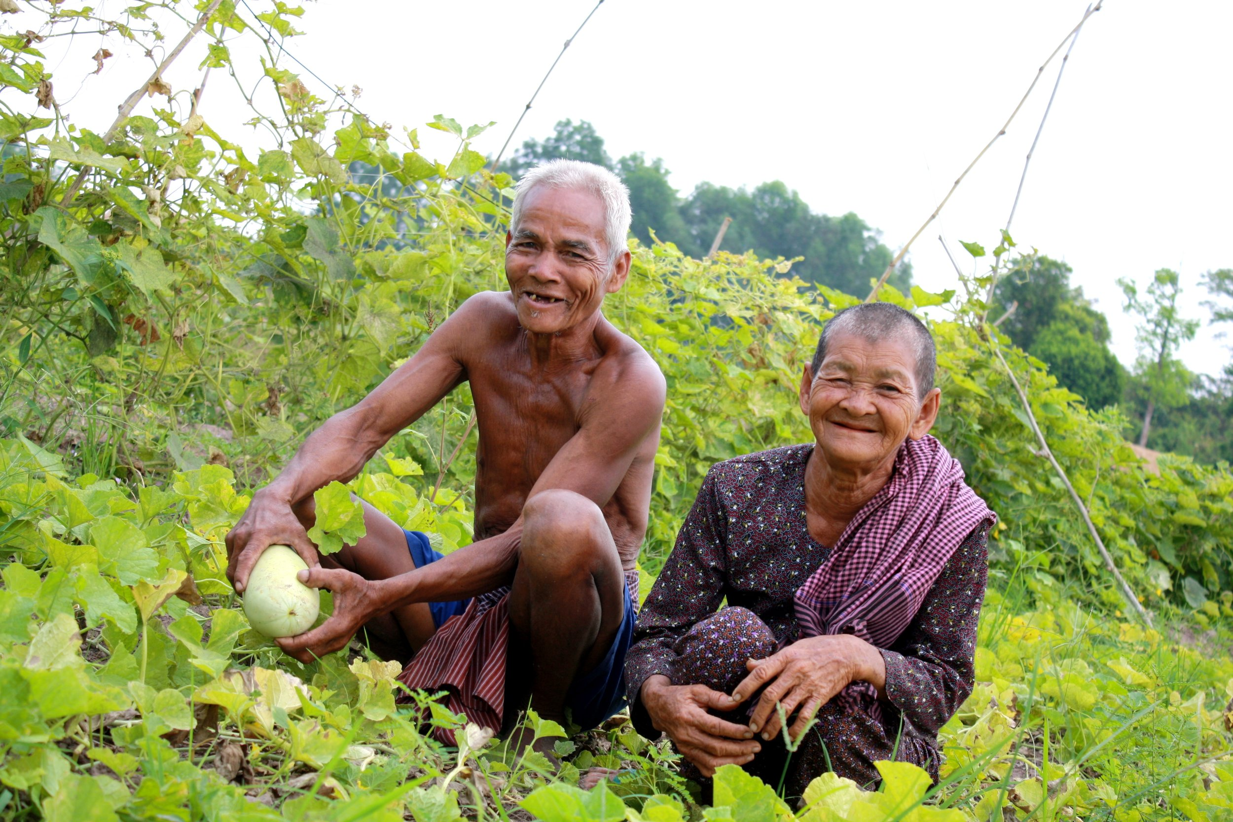 Rural farmers at harvest time.