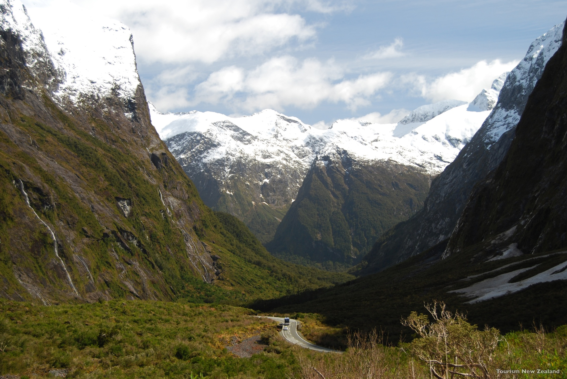 Cleddau-Valley-Fiordland-Tourism-New-Zealand.jpg