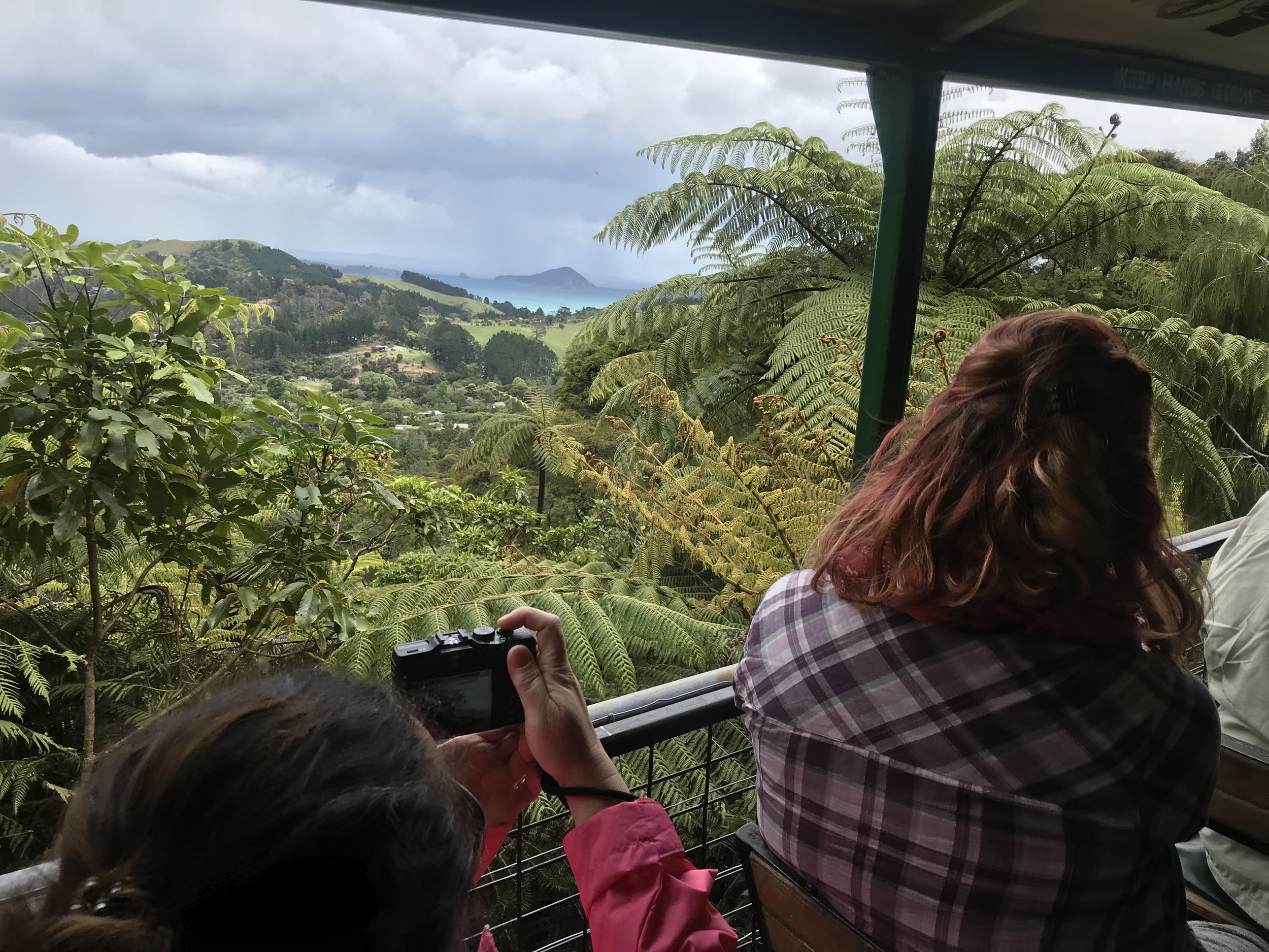 Enjoy the views at Driving Creek Railway as well as the non-existent pressure to buy anything!
