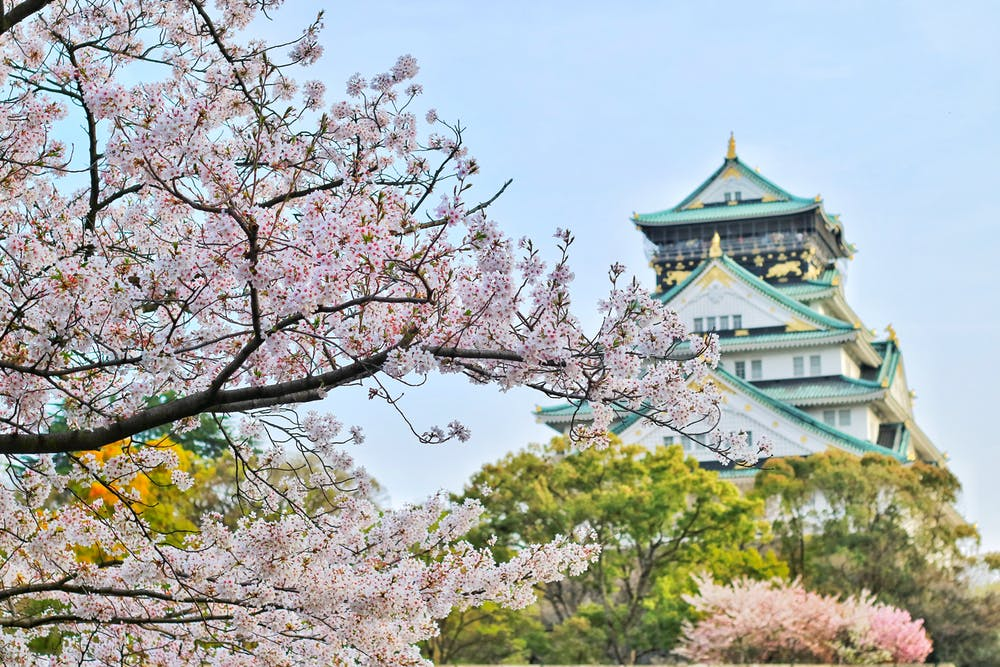 Kyoto.jpeg