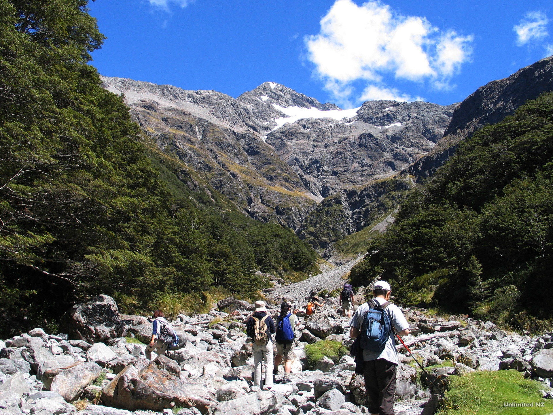 AT29-Bealey-Valley-Arthur's-Pass-Canterbury-Unlimited-New-Zealand.jpg