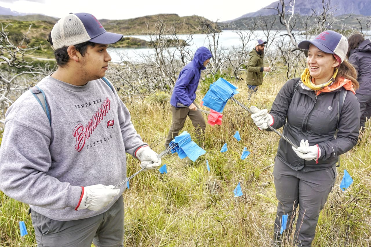 Volunteers carrying-out reforestation monitoring. Photo: Cristobal Ortega