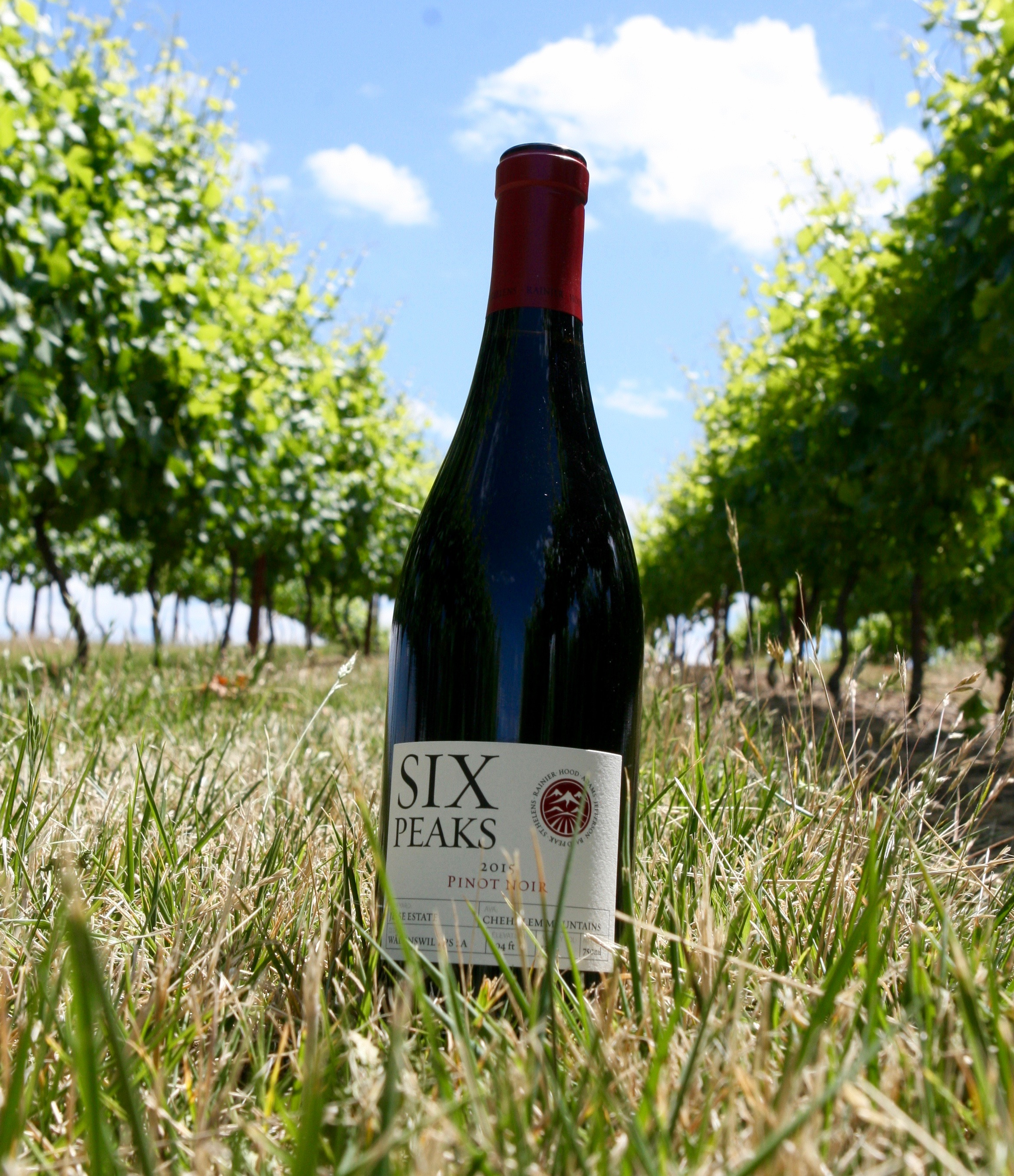 2015 Six Peaks Pinot Noir is made with 100% Wädenswil  from our Blooming Hill Vineyard.