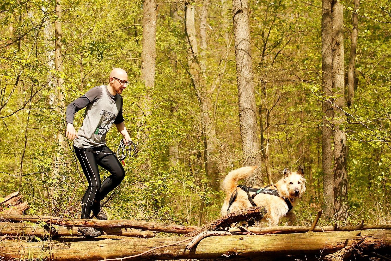 Trails - Everybody Welcome.Camp Canis hat nicht nur Trails im Angebot. Camp Canis hat deinen Trail im Angebot. Wir sind da, damit du Hindernisse überwindest und nicht schon bei der Anmeldung an ihnen scheiterst. Wir bauen unsere Herausforderungen auf den Trail, nicht auf die Homepage.