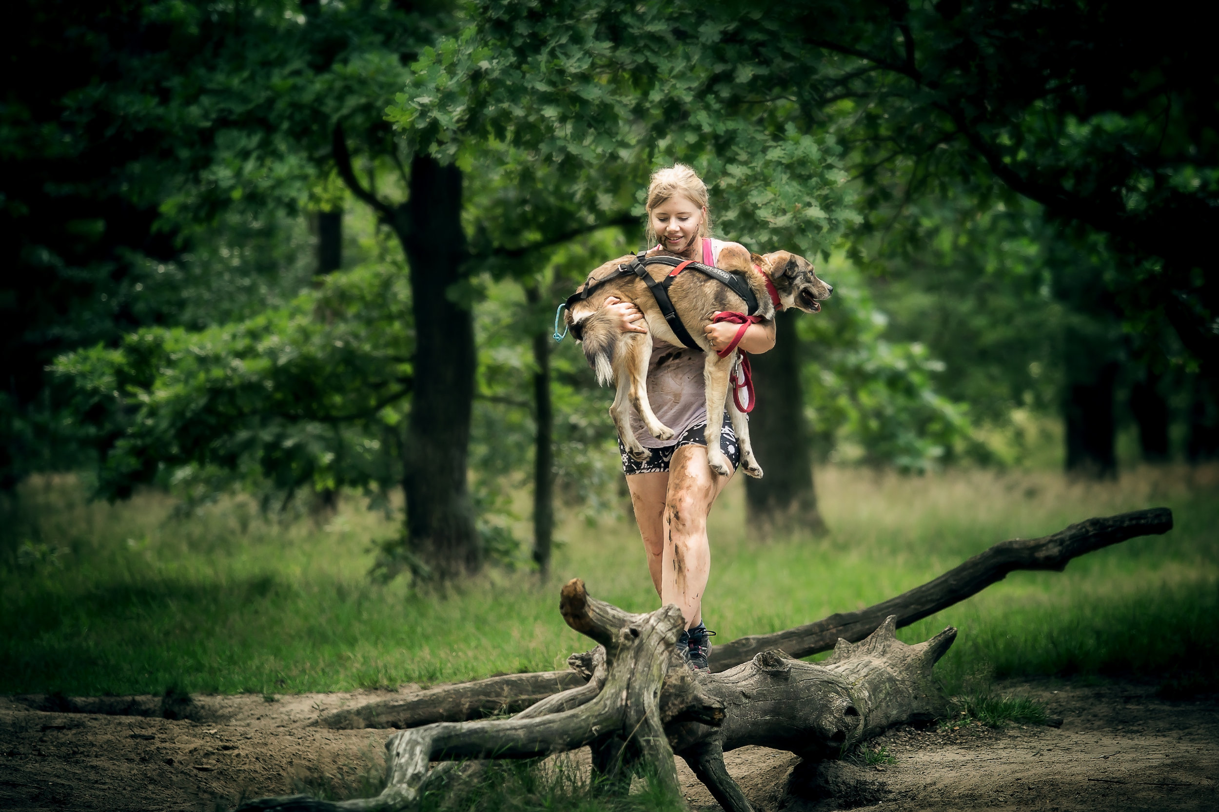 Camp Canis Challenge Vertrauen
