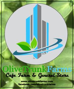 olivetrunk.png