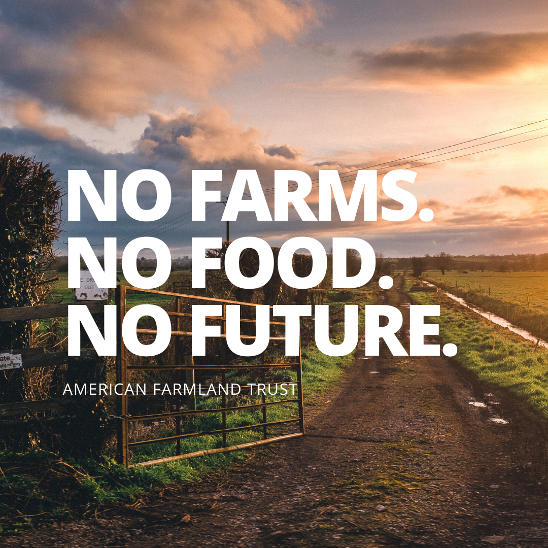 1 Million 1 000 Farmers One Month Tastemakers