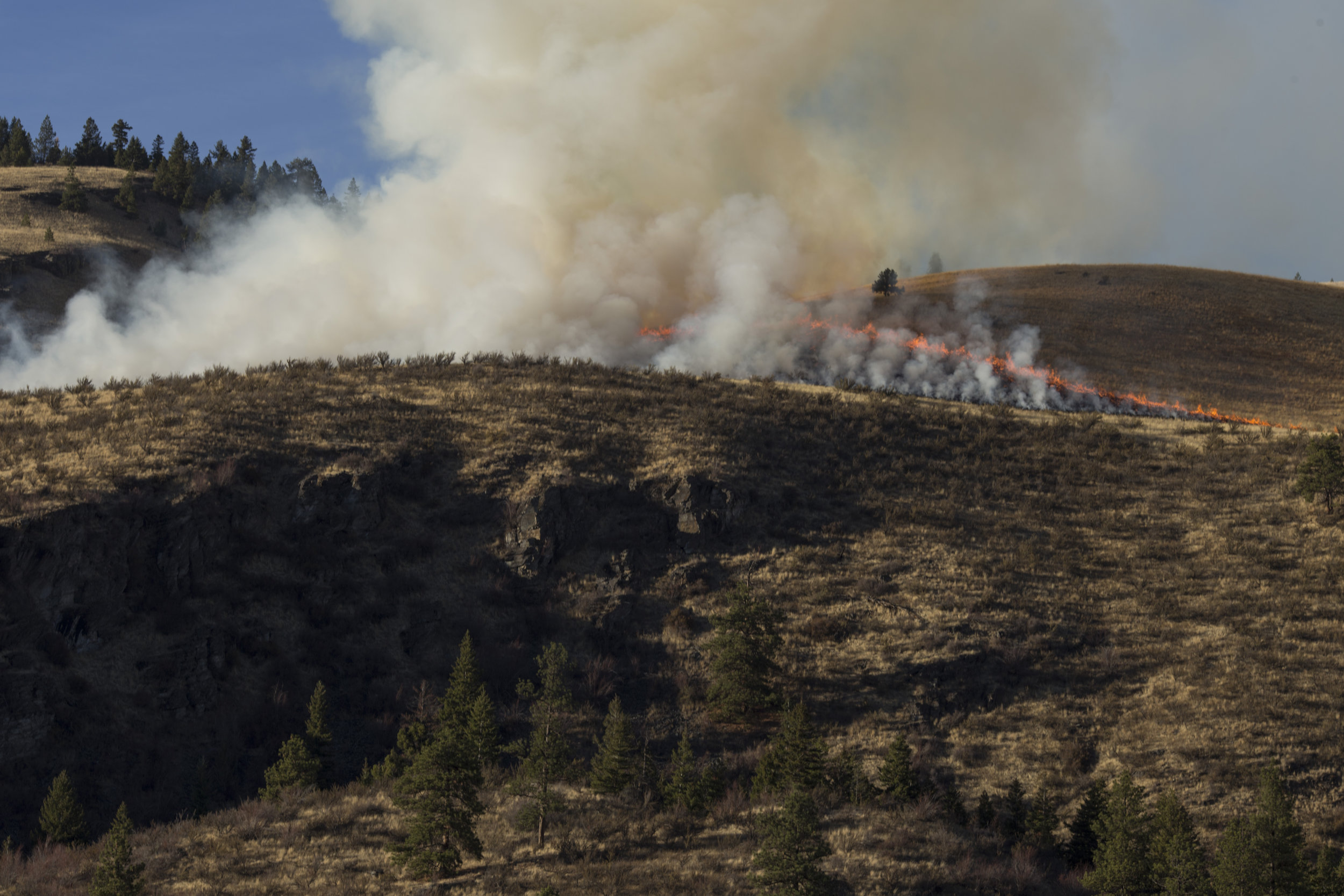 The prescribed burn prepared by the Confederated Salish and Kootenai Tribes Division of Fire skims the ridge line just outside of Elmo, Montana., on Tuesday, October 24, 2017.