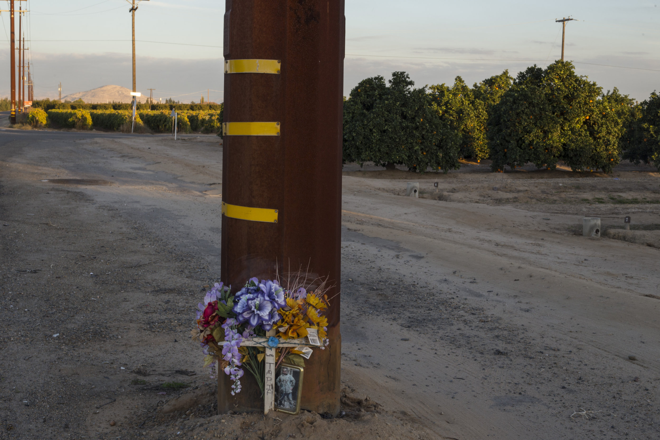 A memorial stands against a telephone pole at the edge of a highway spanning through miles of mass agriculture in Fresno, Calif., on Friday, November 10, 2017.
