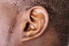 EAR -