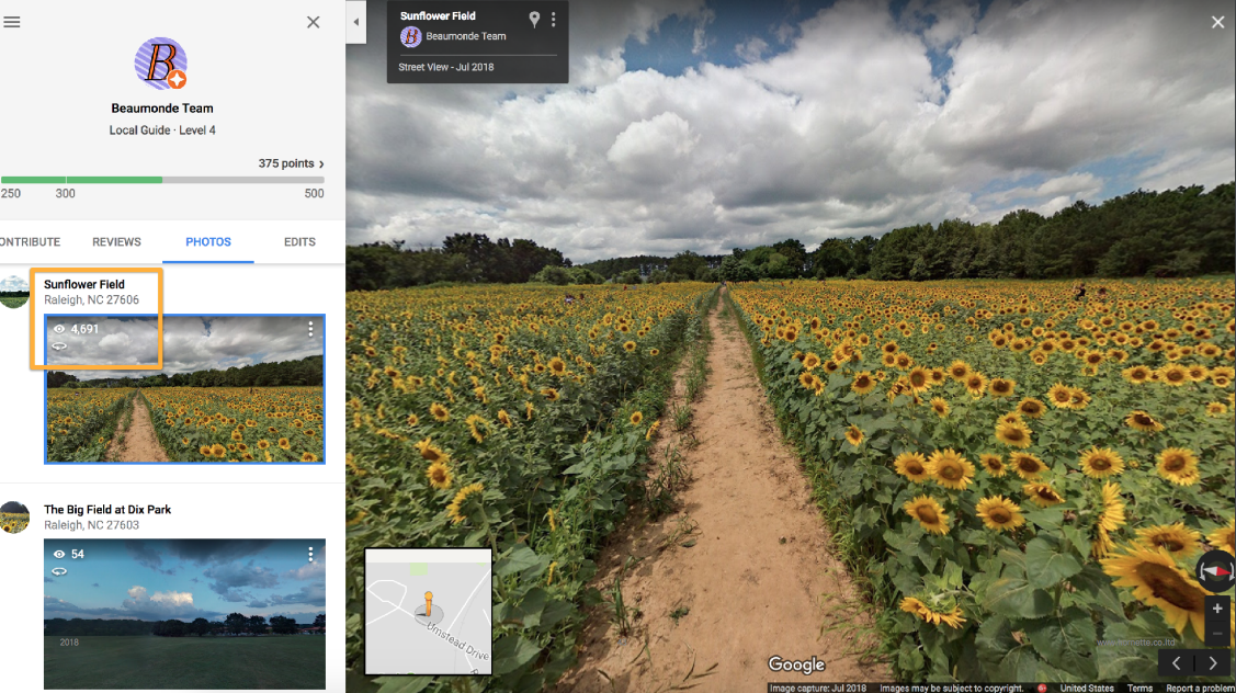 Beaumonde on Google Street View, featuring Dorthea Dix's sunflower field in 360°.