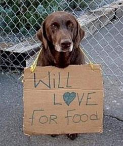 Dog Food Pantry -