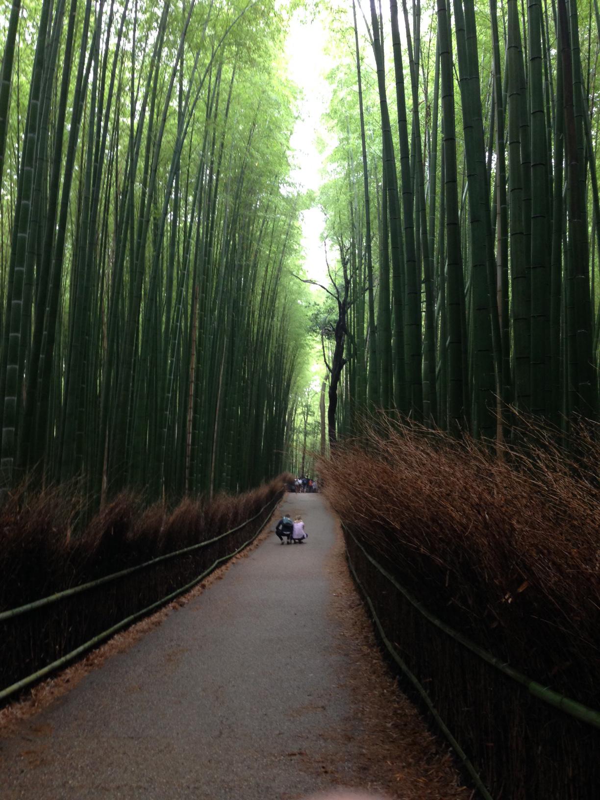 11Arashiyama-3.jpg