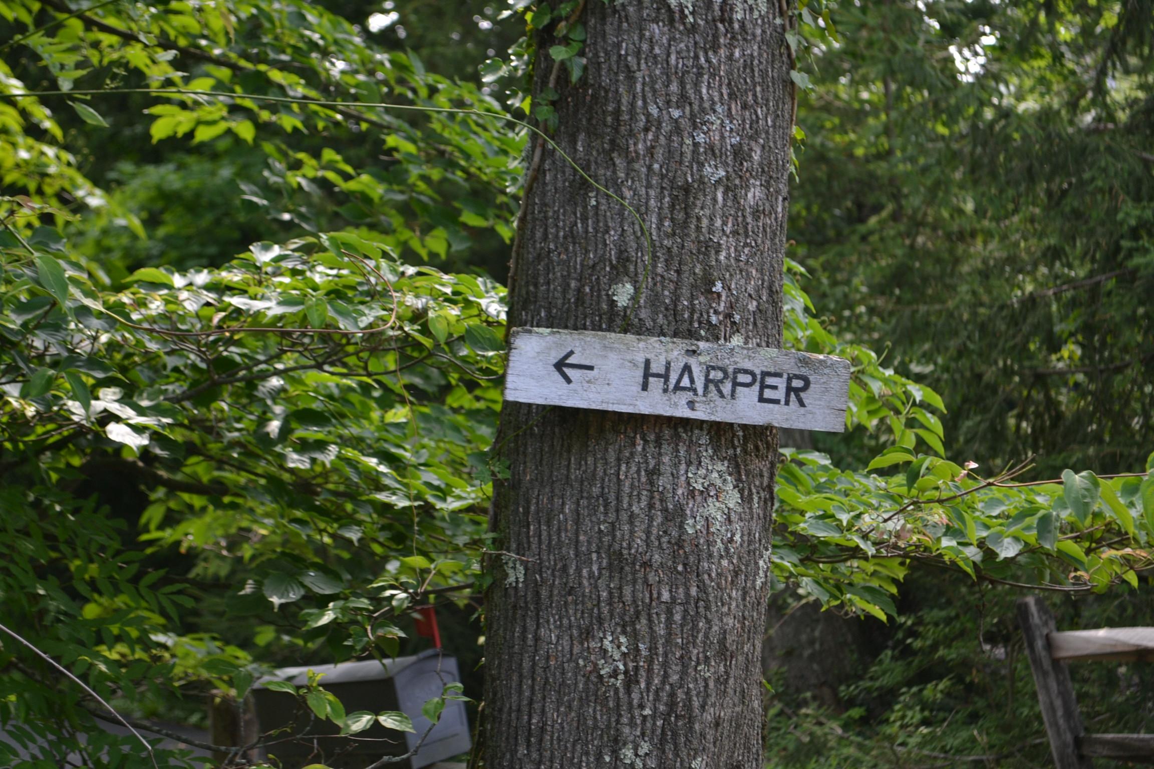 Harper Sign on Tree.JPG