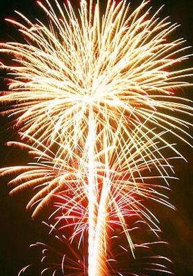 fireworks-cruise_3_3.jpg