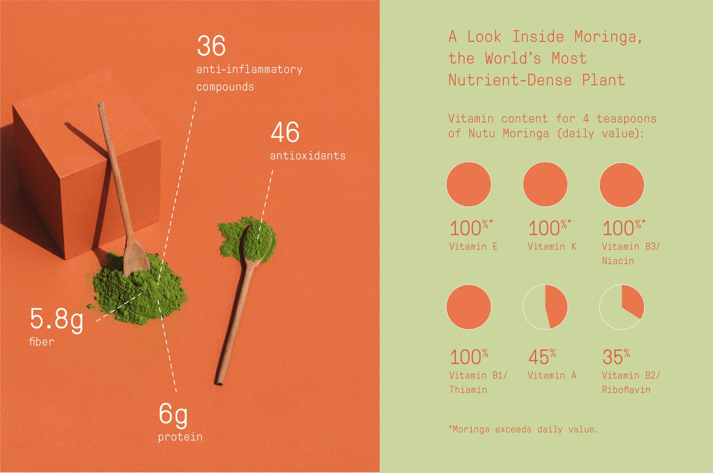 moringa infographics