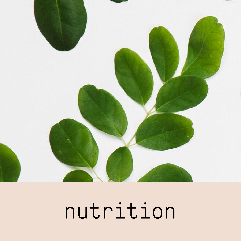 scientific studies about moringa benefits