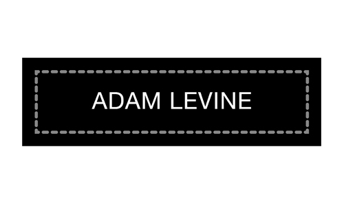 ADAM+LEVINE500x300.jpg