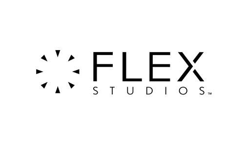 FLEX500x300.jpg