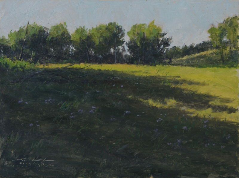 """""""Early Evening Shadows"""""""