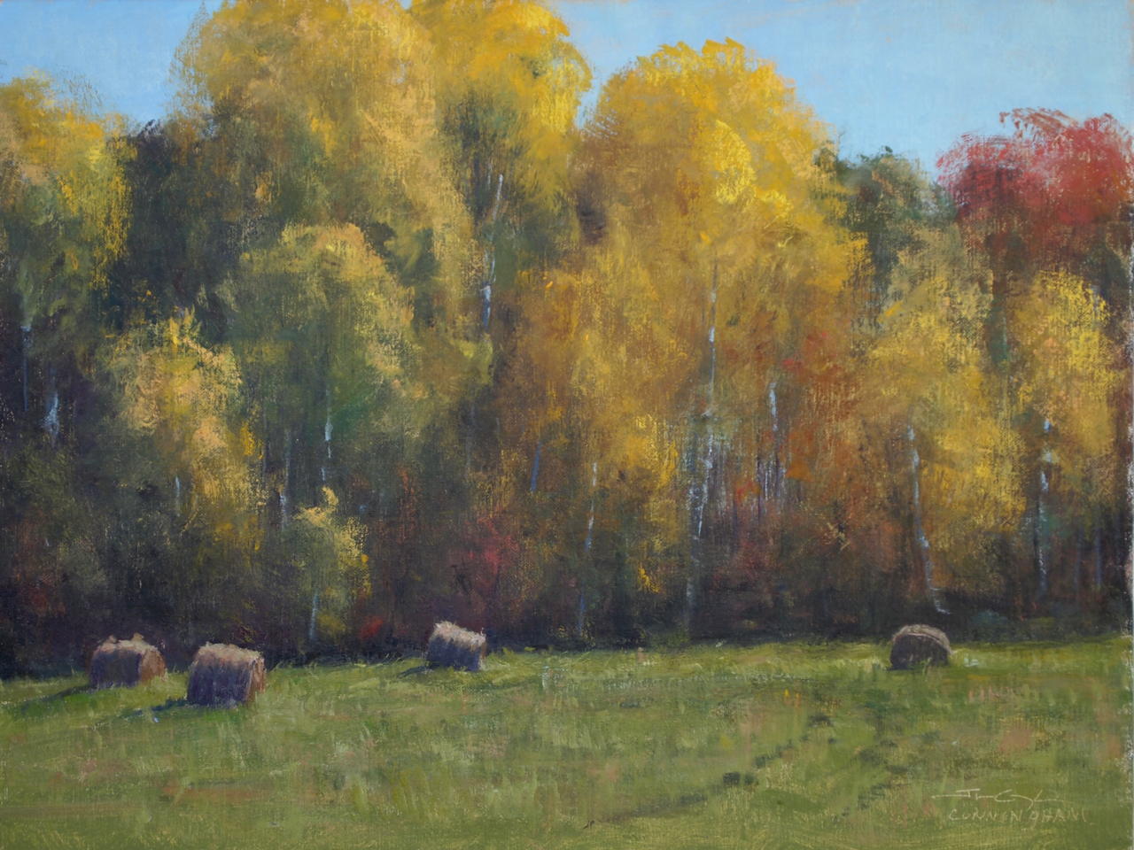 Bales and Birches