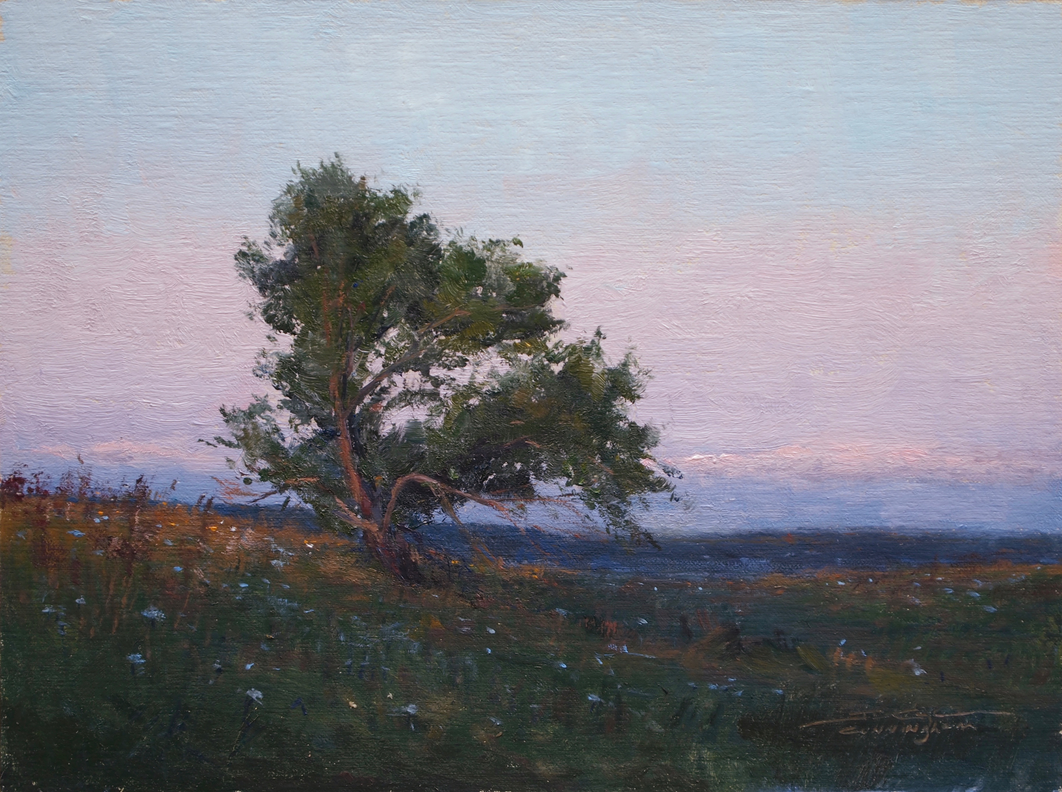 SOLD - After Sunset