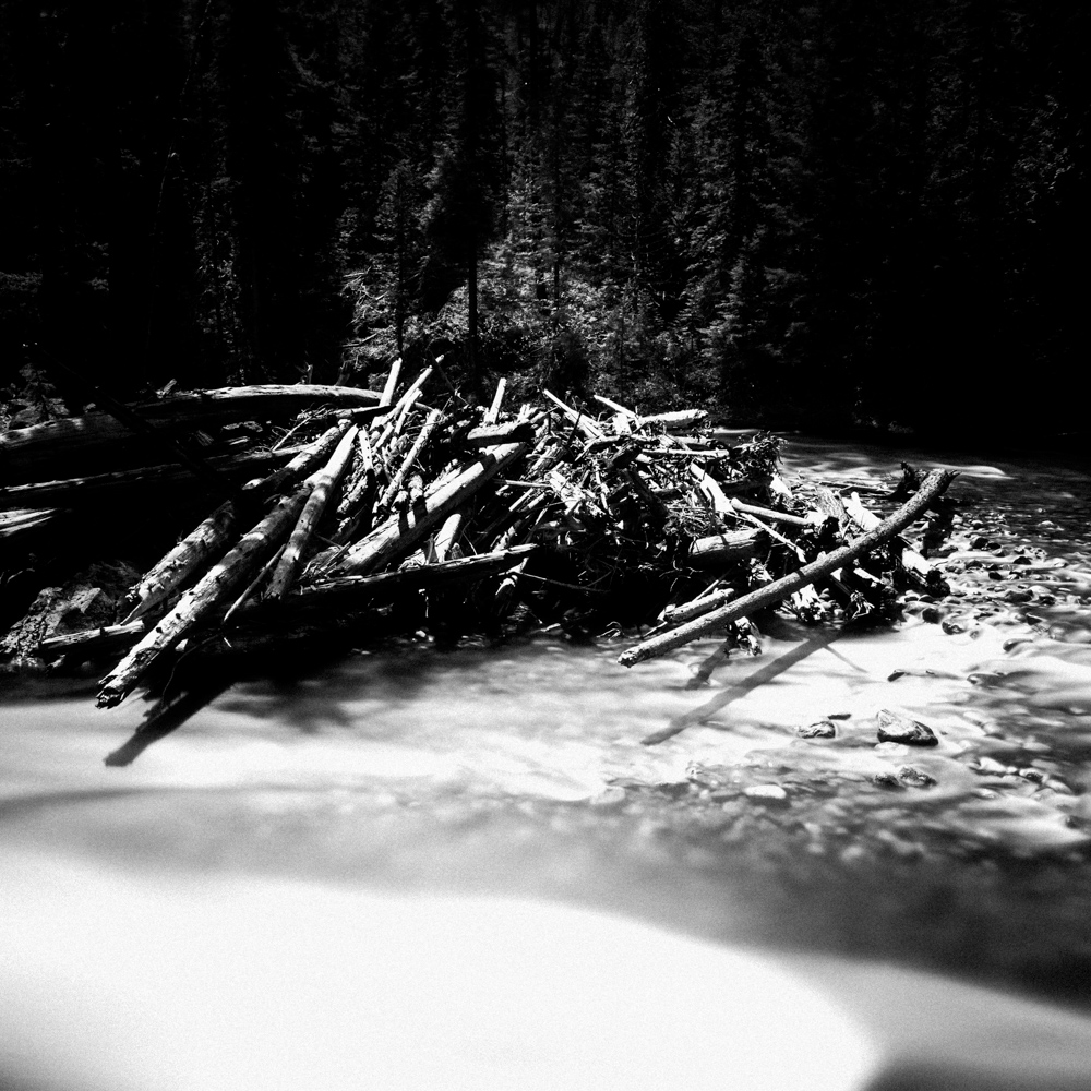 Icicle Creek, May 2017