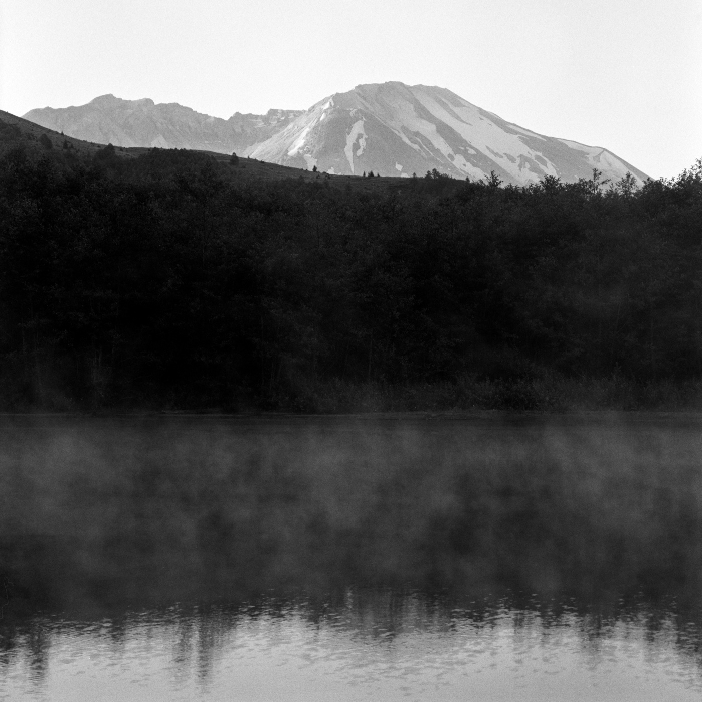 Mt St Helens from Coldwater Lake, July 2017
