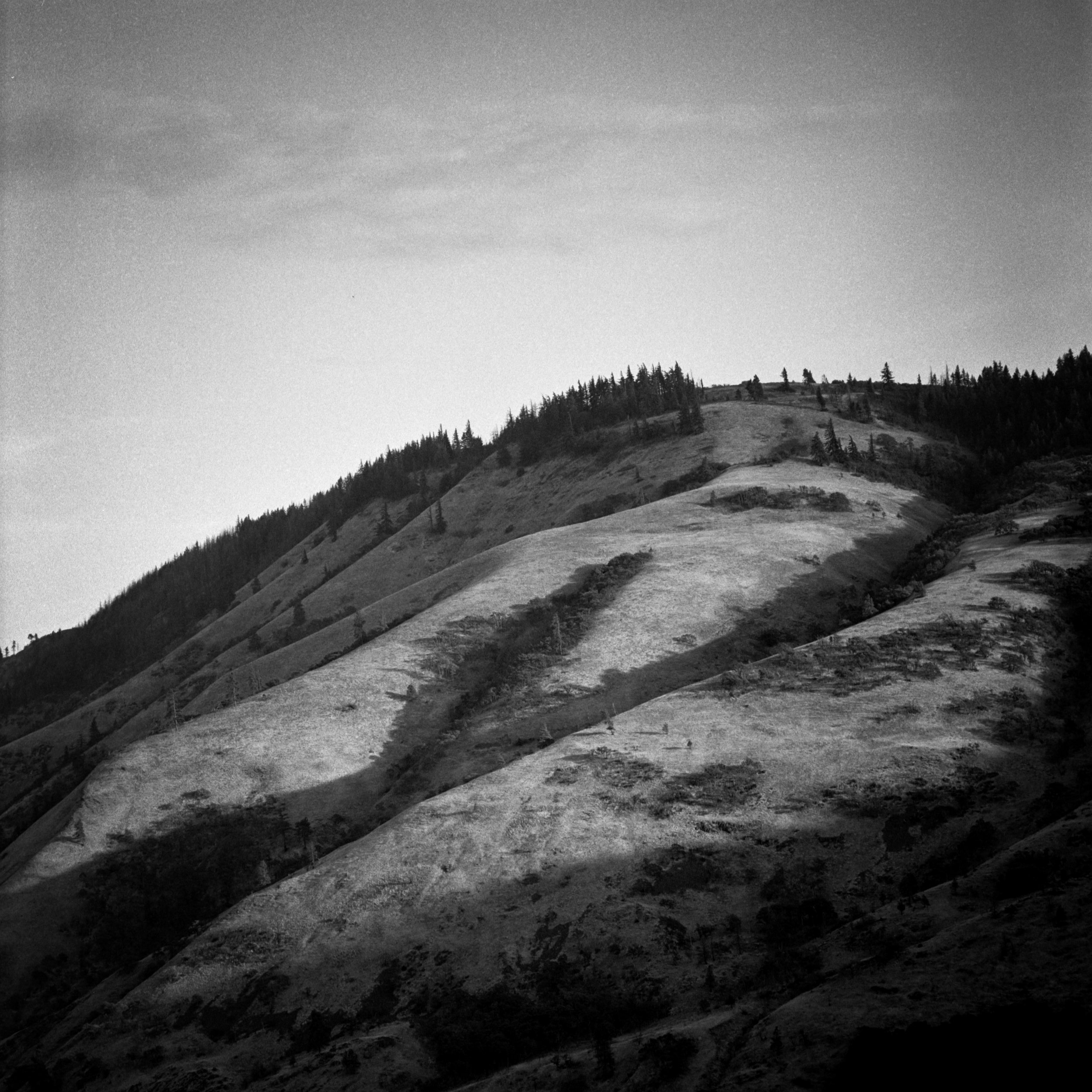 The hills of the Eastern Gorge, The Dalles, September 2017
