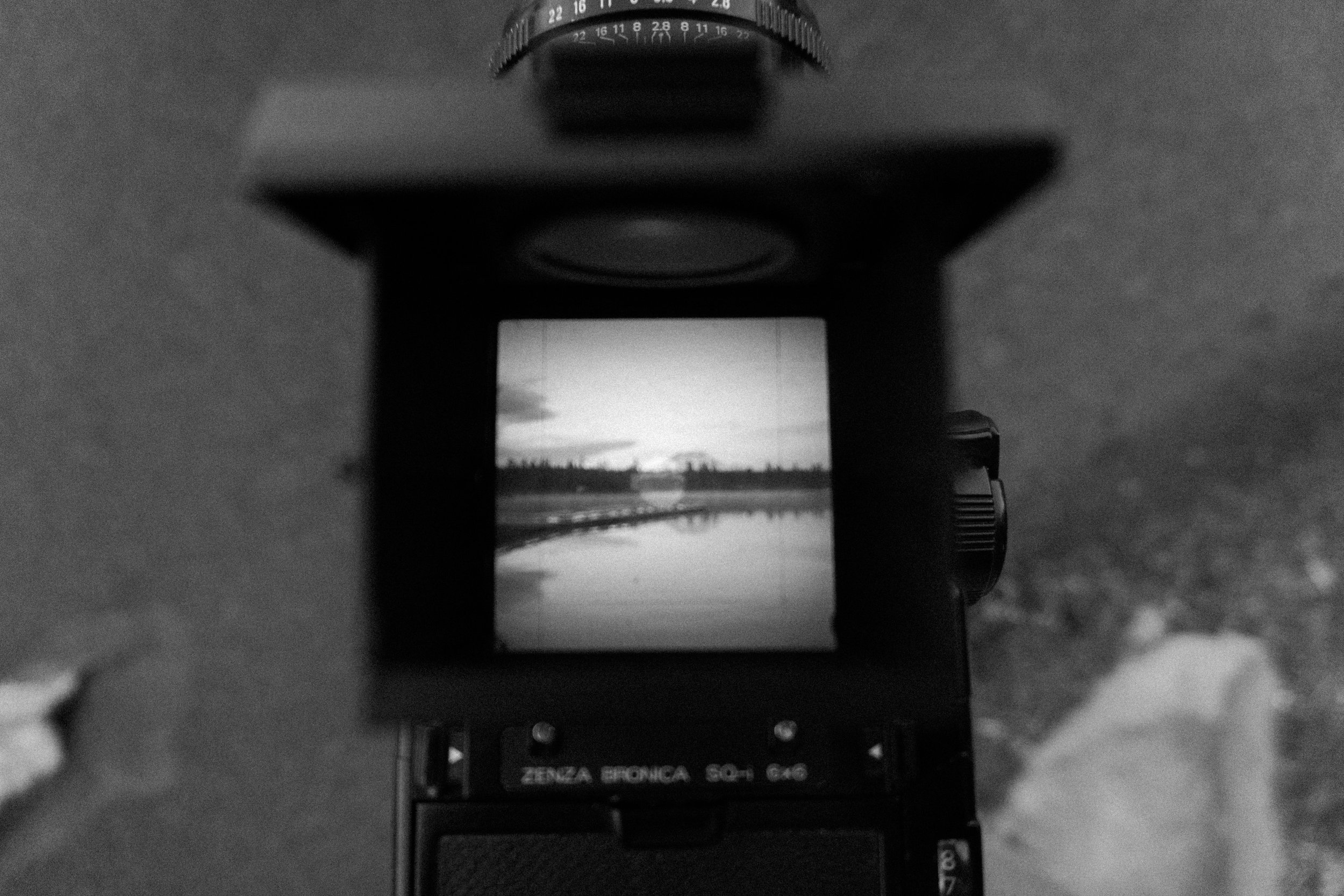 Bronica in action