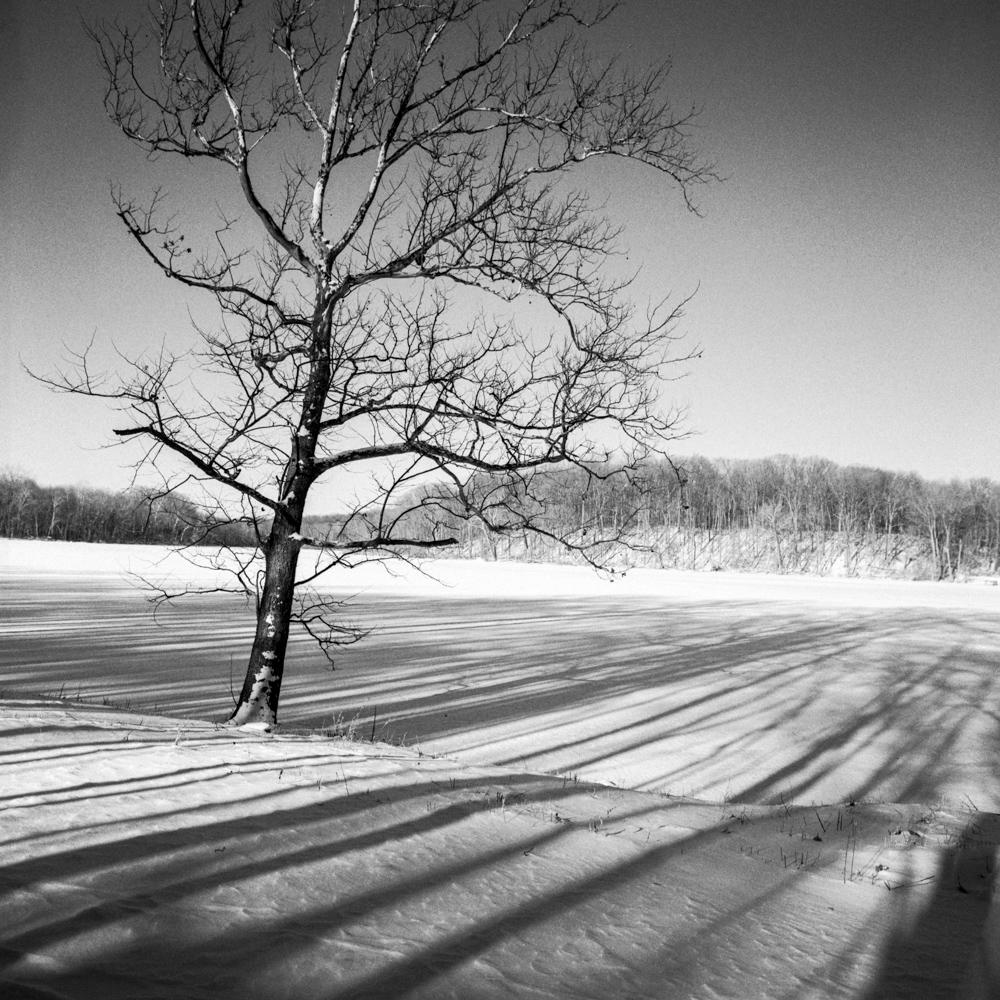 Chain O Lakes, January 2018