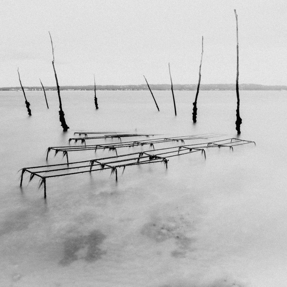 Oyster Beds, Arcachon Bay, November 2018