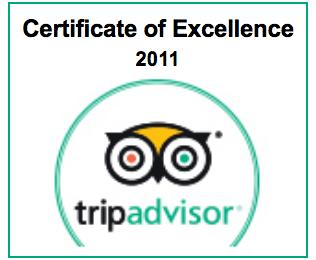 Trip-Advisor-ENG-2011.png