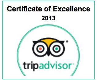 Trip-Advisor-ENG-2013.png