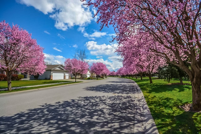 Finding the Right Neighborhood - By Coldwell Banker